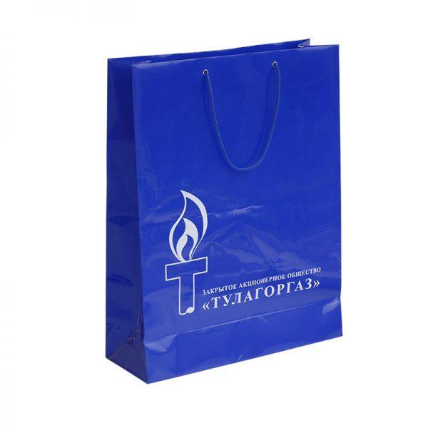 Бумажные пакеты с логотипом компании. Вариант №01
