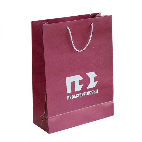 Бумажные пакеты с логотипом компании. Вариант №04