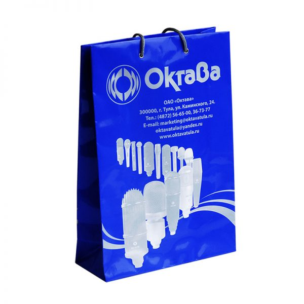 Бумажные пакеты с логотипом компании. Вариант №05
