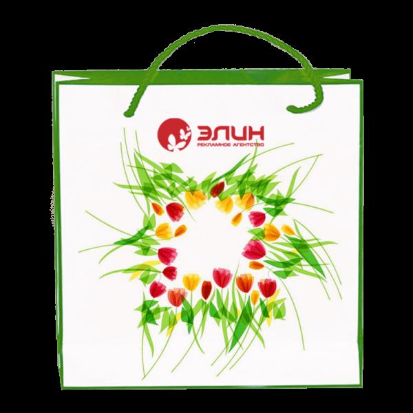 Пакеты с нанесением логотипа компании вариант №6
