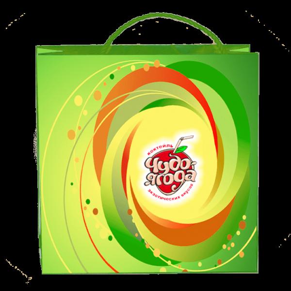 Пакеты с нанесением логотипа компании вариант №8