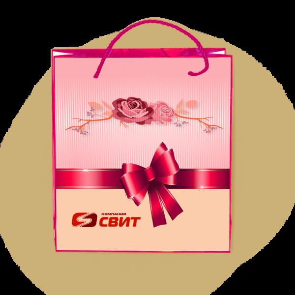 Пакеты с нанесением логотипа компании вариант №10